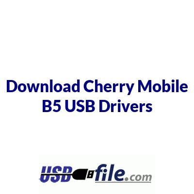Cherry Mobile B5