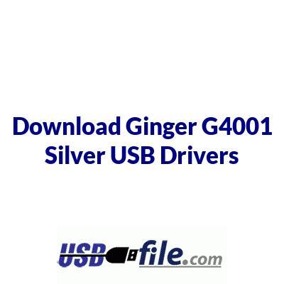 Ginger G4001 Silver